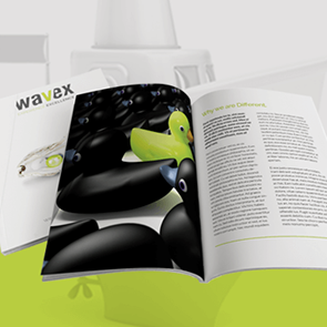 WAVEX Brochure Design